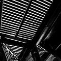 Light Falls Thru by Karol Livote