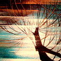Light Melody by Kumiko Mayer