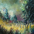 Light On Trees by Pol Ledent