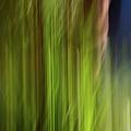 Light Series 2 by Bob Sebring