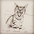 Light Sweet Cat by Pookie Pet Portraits
