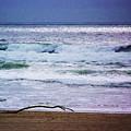 Light Waves To Sand by Julie Rauscher