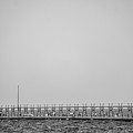 Lighthouse And Pier Grand Haven Michigan In Black And White by Art Spectrum