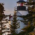 Lighthouse At Bass Harbor by Bob Phillips