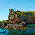 Lighthouse On Cliff Dunedin New Zealand by Laura D Young