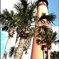 Lighthouse Palms by Alice Gipson