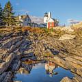 Lighthouse Reflection by Brenda Gooder