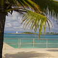 Lighthouse Under Palm In Bahamas by Rod Schall