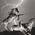 Lightning At Horse World by James BO Insogna