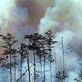 Lightning Strike Fire by Robert Potts