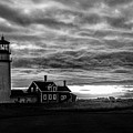 Lights In The Storm by TK Goforth