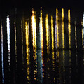 Lights On The Water by Andrea Freeman