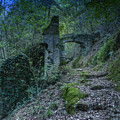Ligurian Jungle Covering Up Old Mill Valley Entrance Arch Ruins by Enrico Pelos