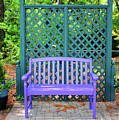 Lilac And Teal Garden by Cynthia Guinn