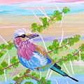 Lilac Breasted Roller In Thorn Tree by Phyllis Kaltenbach
