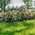 Lilac Bushes In Springtime by Michelle Calkins