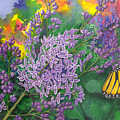 Lilac by Catherine G McElroy