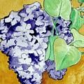 Lilacs by Brenda Owen
