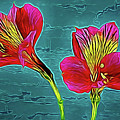 Lilies 18-10 by Ray Shrewsberry