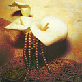 Lilies And Pearls by KaFra Art