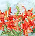 Lilies by Natalia Piacheva