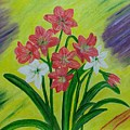 Lilies by Suma GV