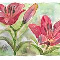 Lilies by Yana Sadykova