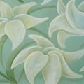 Lilium Seafoam by Flavia Westerwelle