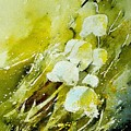Lilly Of The Valley by Pol Ledent