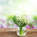 Lilly Of Valley Posy In Glass by Anastasy Yarmolovich