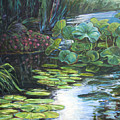 Lilly Pads by Gary Symington