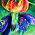 Lily And The Butterflies by Mrinmay Sebastian