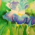 Lily Flower  by Nakiya Redding