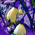 Lily Of Valley Abstract by Beth Akerman