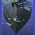 Lily Pads And Reflection by John Hansen