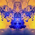 Limbo by Brant Samuel