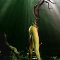 Limbs by Joe Costello