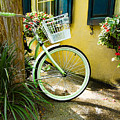 Lime Green Bike by Cindy Archbell