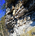 Limestone Cliff by Bonfire Photography