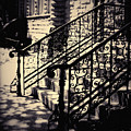 Lincoln Park Stairway by Kyle Hanson