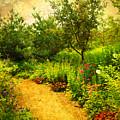 Linden Gardens 2 by Tara Turner