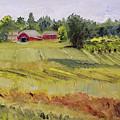 Linden Row Farm by Susan Hanna
