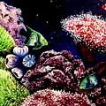 Lindsay's Aquarium by Elizabeth Robinette Tyndall