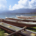 Line Of Outrigger Canoes by Joss - Printscapes