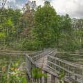 3003 - Linear Park Bridge In Lapeer by Sheryl Sutter