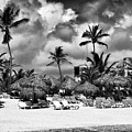 Lined Up At Punta Cana by John Rizzuto