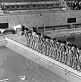Lineup Of Ncaa Men Swimmers by Underwood Archives