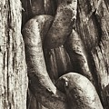 Links To Copper Harbor's Past by Scott Wendt Tom Wierciak