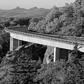 Linn Cove Viaduct Black And White by Dan Sproul