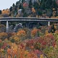 Linn Cove Viaduct by Gary W Baird